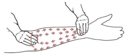 Рис. 1. Схема массажа предплечья