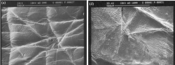 Текстура кожи до и после обработки серицином
